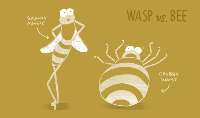 BHR-animal-differences-1-wasp